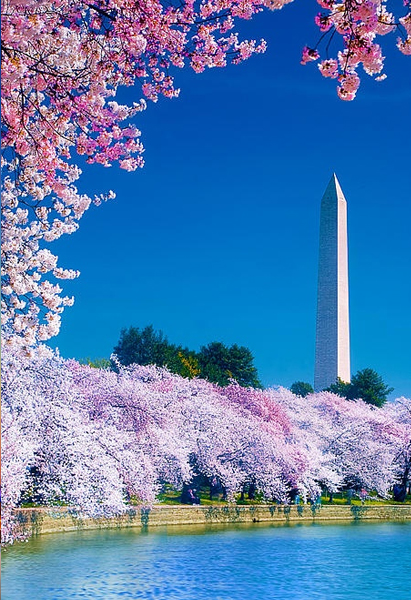 2014-04-04 America 3