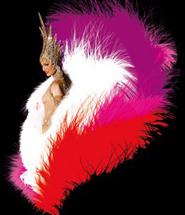 Cabaret Cover