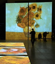Van Gogh Cover