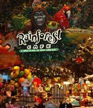 Rainforest Cover