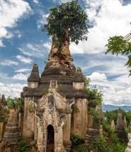 Birmania Cover